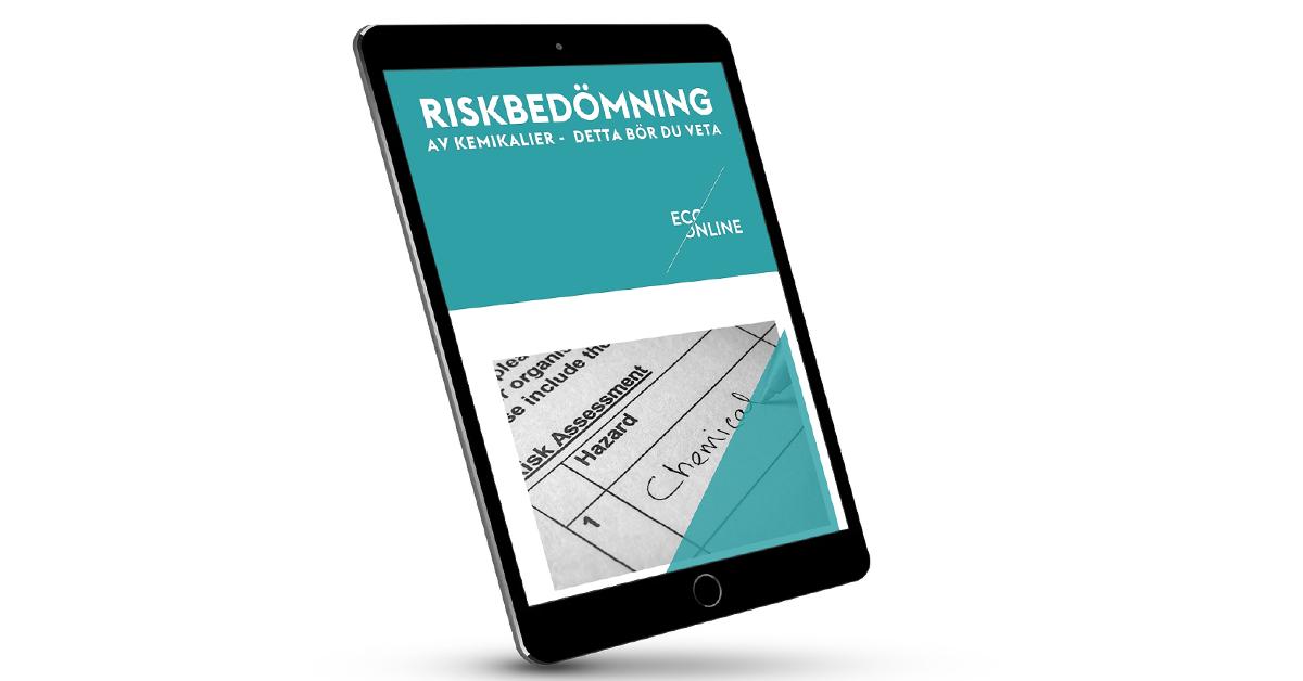 Riskbedömningguide